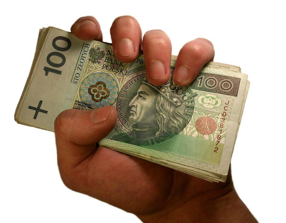 money-in-hand-1207855_1920