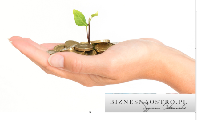 Kredyt firmowy. Jak przygotować się dopożyczania pieniędzy nainwestycje?