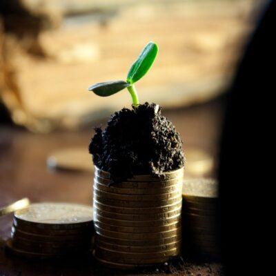 Wypłacanie pieniędzy ze spółki z ograniczoną odpowiedzialnością. Lista 10 oczywistych i mniej oczywistych sposobów